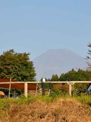 富士裾野ファミリーキャンプ場