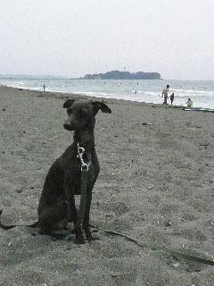 江ノ島と一緒に。