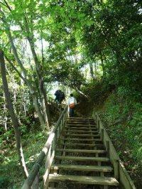 生田緑地 階段